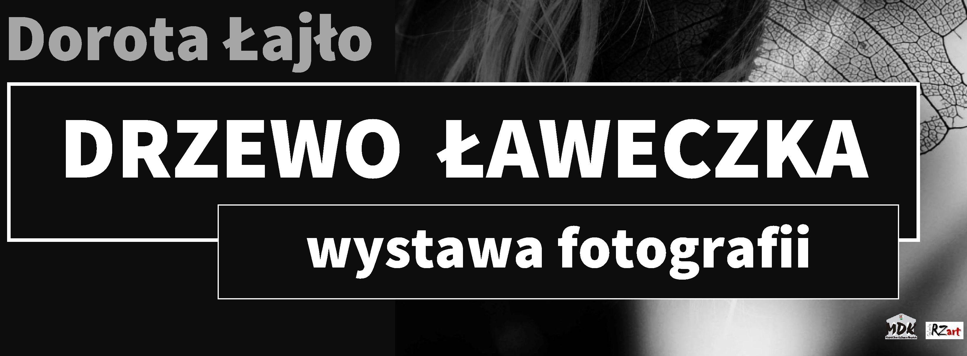 """Ilustracja do informacji: Wernisaż Doroty Łajło """"DRZEWO ŁAWECZKA""""."""